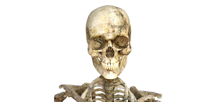 Ochrona układu szkieletowego
