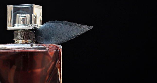 Męski świat perfum Dolce Gabbana